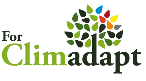 French to English translation for the International association of Mediterranean Forests