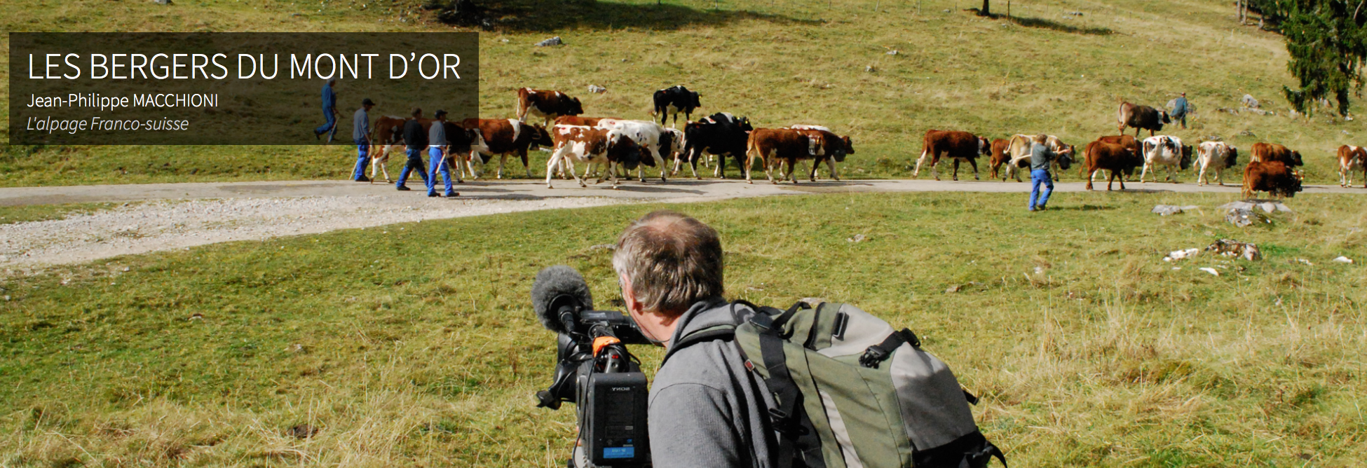 Audiovisual translation for Vie des Hauts Production
